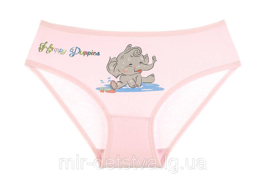 Детские трусики для девочек ТМ Donella оптом р.2/3 года (98-104 см)