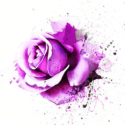КДІ-1022-1 Набір алмазної вишивки Бризки троянд-1, фото 2