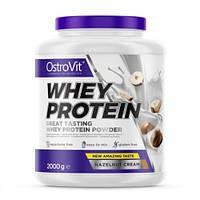 Протеин OstroVit Whey Protein, 2 кг Ореховый крем
