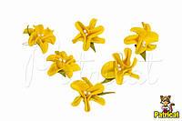 Цветы Жасмин желтый с тычинками из фоамирана (латекса) 3 см 10 шт/уп