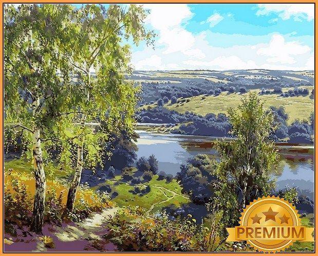 Картина по номерам 40×50 см Babylon Premium (цветной холст + лак) Дорога к реке (NB 959)