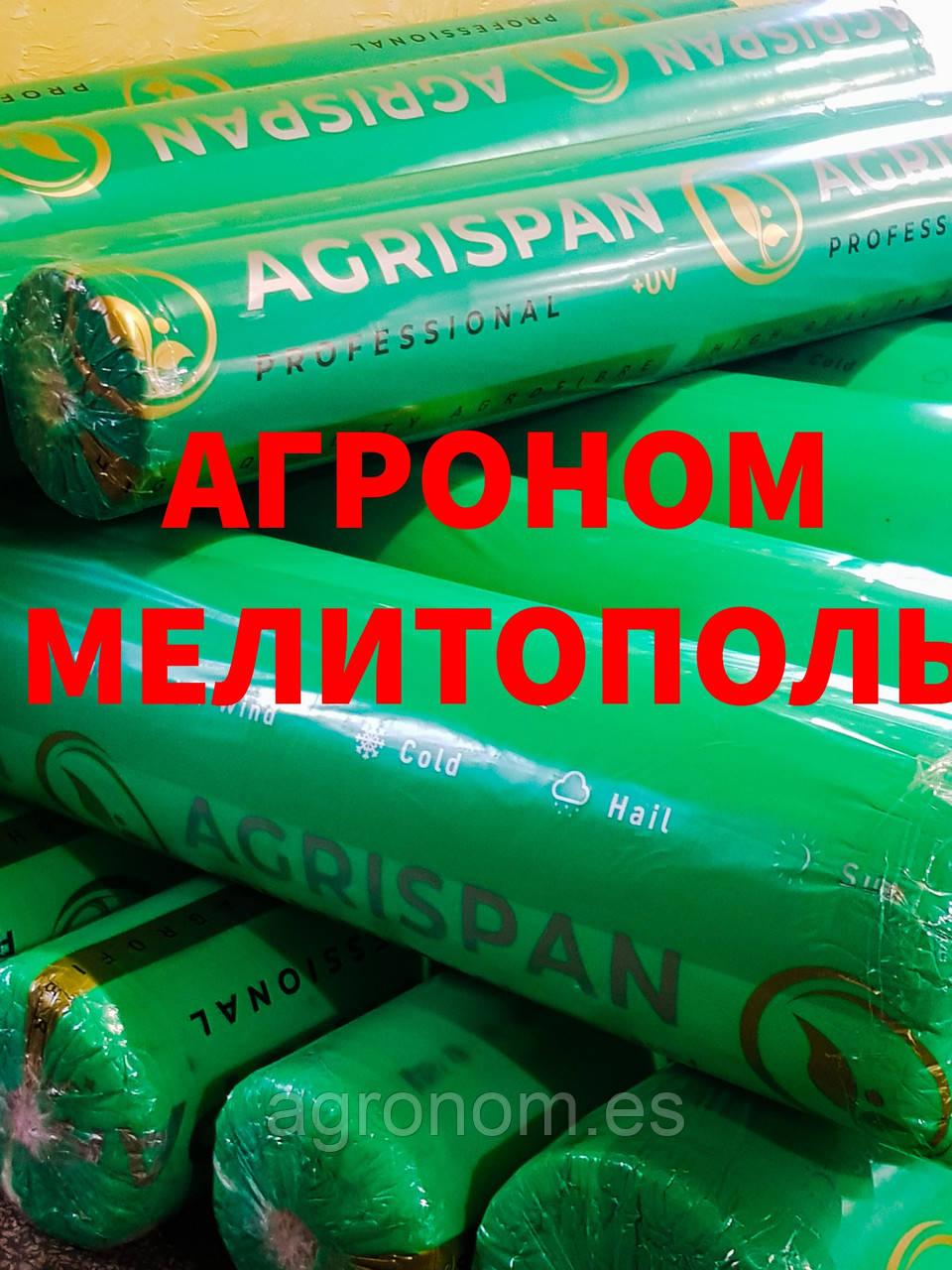 Агроволокно Agrispan 30 (15,8 х 100)