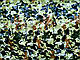 Сетка маскировочная затеняющая MTP , CE 3х6м пленка, фото 4