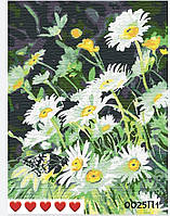 Картина по номерам Ромашки (цветной холст) 40*50см Барви Розпис по номерах