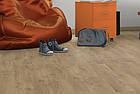 Ламинат Egger PRO Classic Дуб Ольхон медовый EPL144 32 класс 8мм толщина с фаской, фото 3