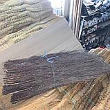 Веник березовый,метла, фото 9