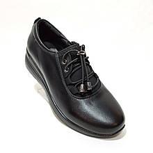 38,40 р. Жіночі весняні туфлі на блискавці з резинкою і з затяжкою еко-шкіра
