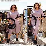 Стильное платье    (размеры 50-56) 0255-12, фото 2