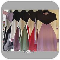 Туніка для жінок триколірна розмір 44-50, колір уточнюйте при замовленні