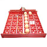Красный лоток автоматического переворота для инкубатора на 36 (144) яиц БЕЗ мотора, фото 2