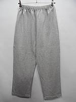 Мужские спортивные демисезонные брюки NTT р.50-52 003SPMD