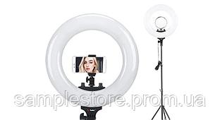 Кольцевая LED лампа + зеркало MM-988 (35см)
