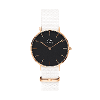 Часы Daniel Wellington DW00100312, фото 1