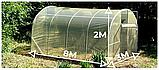 "Теплица ""Дарина"" 3х8, труба 20х20х0.8мм  пленка 120 мкм, фото 2"