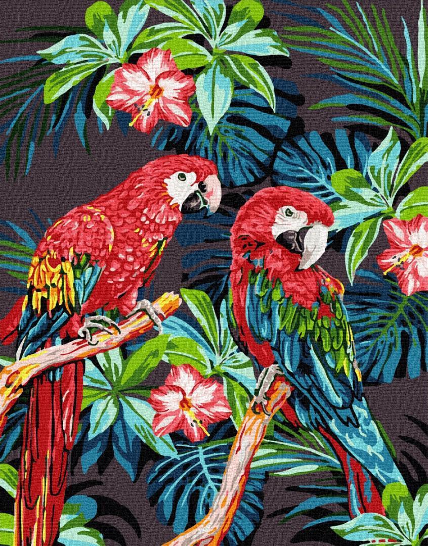 Картина рисование по номерам Brushme Яркие папугаи GX27244 40х50см набор для росписи, краски, кисти, холст