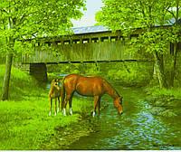 """Картина по номерам  """"Лошади"""" 40*50 см, краски - акрил"""