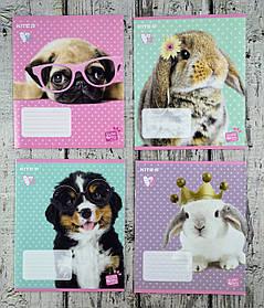 Тетрадь 12 листов линия Studio pets SP20-234 609765К Kite Германия