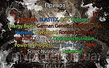 Поступление: BioTech, BLASTEX, BSN, Cellucor, EXTRIFIT, Mutant, Optimum Nutrition, Powerful Progress, R1 (Rule One), SAN, Scitec Nutrition, Universal.