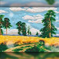 Алмазная вышивка мозаика The Wortex Diamonds Поле 30x40см TWD30030 полная зашивка квадратные стразы. Набор, фото 1
