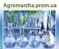 Услуги лаборатории по качеству и безопасности продукции АПК