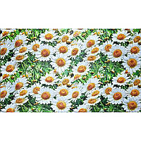 Стеновые декоративные пластиковые панели ПВХ Грейс (Grace) - РОМАШКИ (602х1002 мм)