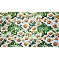 Стінні декоративні пластикові панелі ПВХ Грейс (Grace) - РОМАШКИ (602х1002 мм)