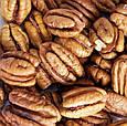Орехи пекан (половинки) 500 г, Targroch, фото 3