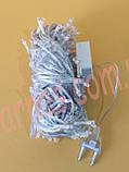 Светодиодная гирлянда 270 LED RGB (7-6a), фото 2