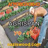 Агроволокно чорне UV-P 4% AGRISPAN-АГРИСПАН Польська якість за доступною ціною. 1.6х100м щільність 50г/кв.м, фото 7