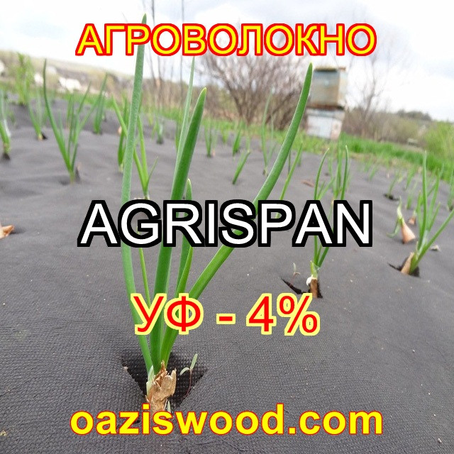 Агроволокно чорне UV-P 4% AGRISPAN-АГРИСПАН Польська якість за доступною ціною. 3.2х100м щільність 50г/кв.м