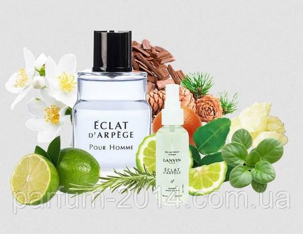 Чоловічий парфум Lanvin Eclat d'arpege Pour Homme 68 мл (осіб.) парфуми аромат запах, фото 2