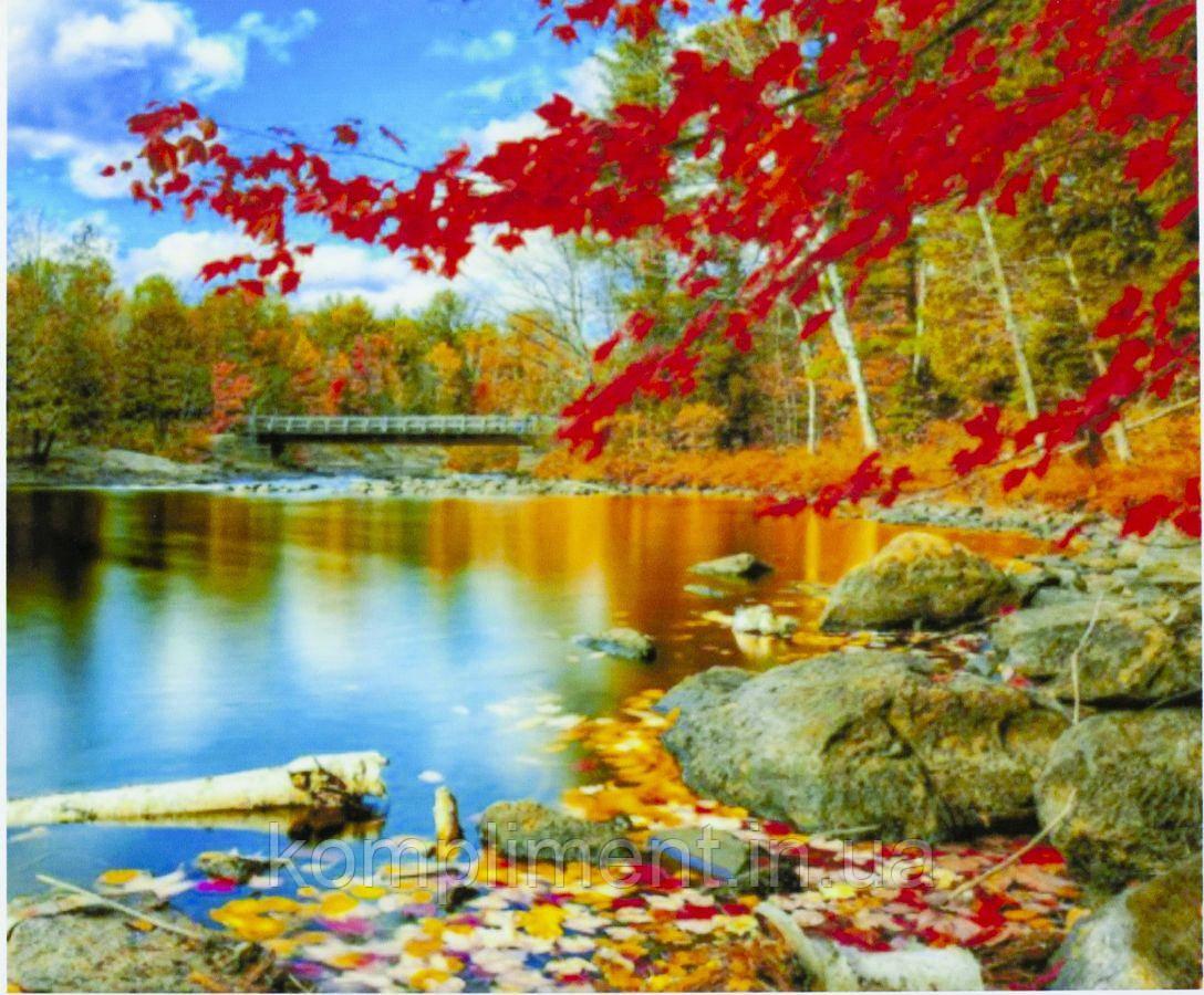 """Картина по номерам  """"Озеро в лесу"""" 40*50 см, краски - акрил"""