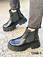Ботинки женские деми кожаные черные челси рептилия, фото 1