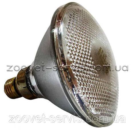 Инфракрасная лампа для обогрева белая PAR38 100 Вт Farma (Польша), фото 2