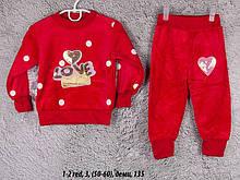 Детский спортивный костюм 1-2 red