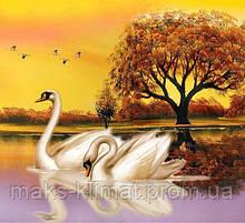Алмазная мозаика Лебеди на пруду 40x40см DM-259 Полная зашивка. Набор алмазной вышивки