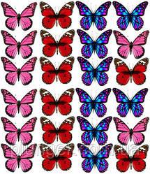 Вафельна картинка для кондитерских виробів, топерів, пряників, капкейків Метелики (листок А4) 20