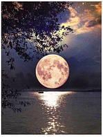 Алмазная мозаика выкладка стразами Лунная дорожка (полная выкладка) квадратные стразы 20*25 см