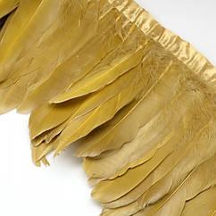 Перо гусиное декоративное на ленте, Цвет: Золотистый, Размер: 100~180x38~62мм, около 2м/упаковка