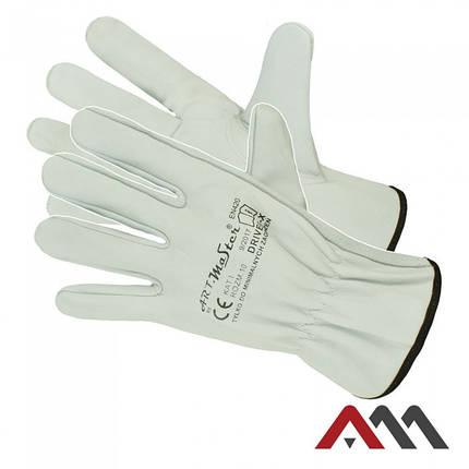 Защитные зимние перчатки DRIVER X, фото 2