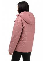Куртка демисезонная (роза-пудра), фото 2