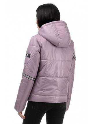 Куртка демисезонная (Пудра), фото 2