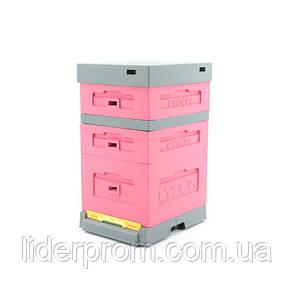 Улей розовый с гигиеническим пластиковым днищем LYSON (Польша), фото 2