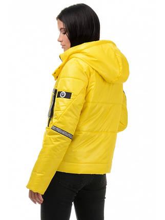 Куртка демісезонна (Жовтий), фото 2