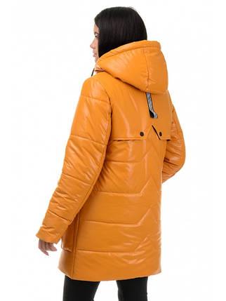 Куртка демісезонна (Гірчиця), фото 2
