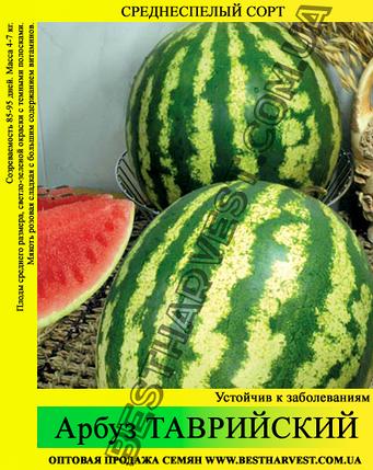 Семена арбуза Таврийский (Таврический) 0.5 кг, фото 2