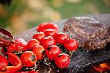 Гриль-мангал, барбекю HOLLA GRILL чёрный, закрытая тумба, фото 6