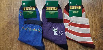 """Шкарпетки жіночі демісезонні хб """"Житомир"""" 25(35-40) Асорті 3"""