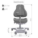 Комплект школьника 👨🏫  парта-трансформер Fundesk Amico Grey + ортопедическое кресло FunDesk Bravo Grey, фото 8