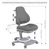 Комплект школьника 👨🏫  парта-трансформер Fundesk Amico Grey + ортопедическое кресло FunDesk Bravo Grey, фото 9